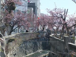 0218itogawa1.jpg