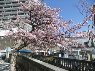 0218itogawa2.jpg