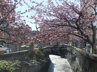 0218itogawa3.jpg