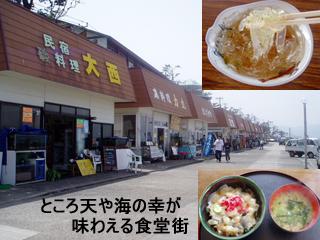 hatusima2_20120423075809.jpg