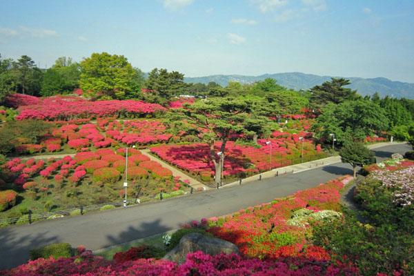 komuroyama130423-3.jpg